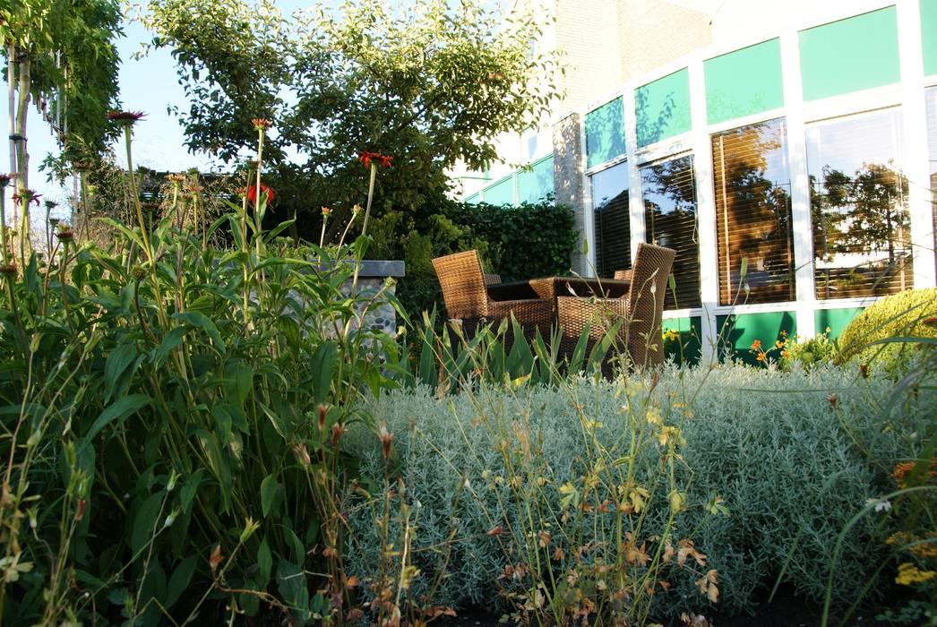 Wintergroen:  Tuin door Ontwerpstudio Angela's Tuinen