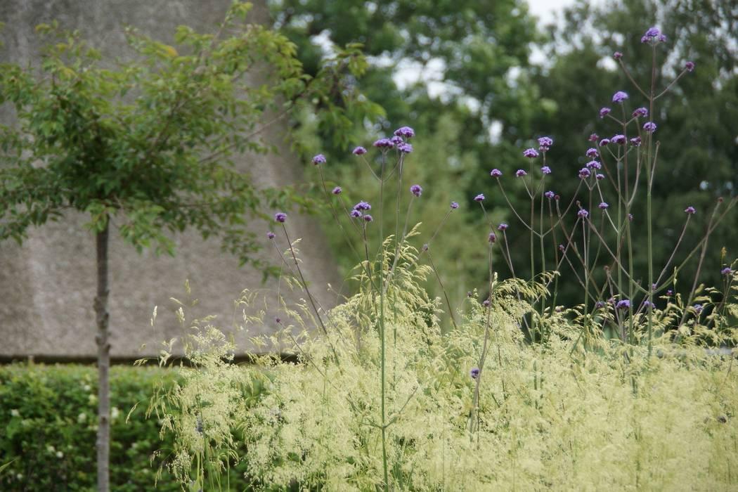 Grassen:  Tuin door Ontwerpstudio Angela's Tuinen