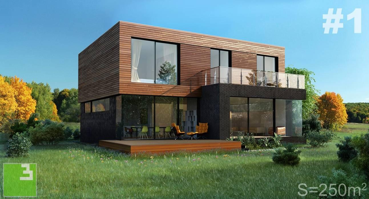 Готовые дома Дома в скандинавском стиле от ALEXANDER ZHIDKOV ARCHITECT Скандинавский Дерево Эффект древесины