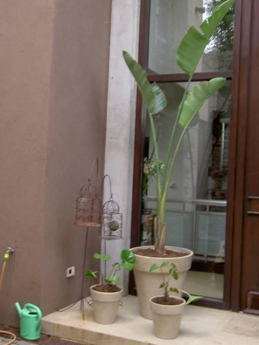 para descubrir: Jardines de estilo  por BAIRES GREEN MUEBLES