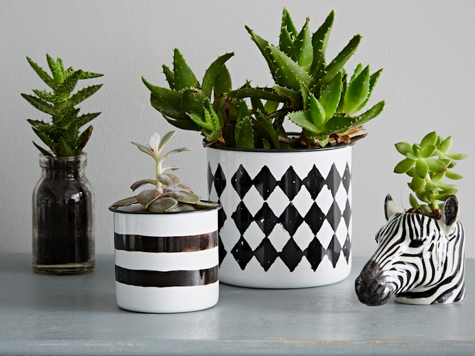 Black and White Enamel Pot:  Household by rigby & mac