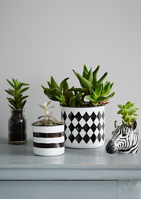 Monochrome Planter Collection rigby & mac HogarAccesorios y decoración