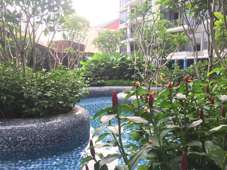 Boathouse Residences Tropical style garden by Tinderbox Landscape Studio Tropical
