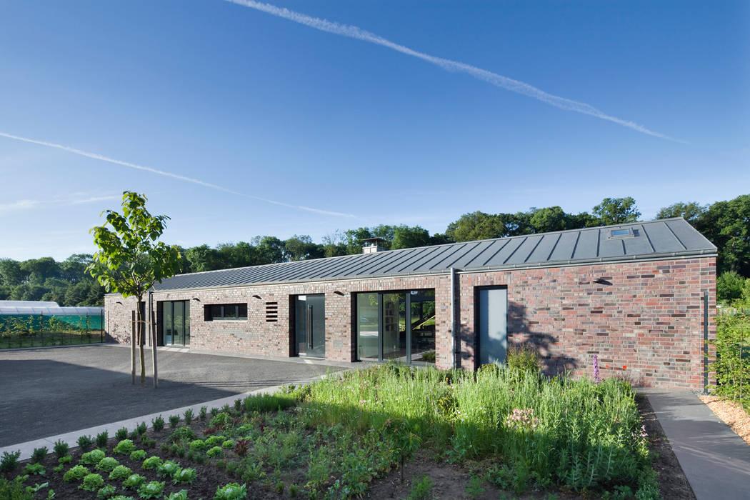 Minimalist style garden by Wichmann Architekten Ingenieure GmbH Minimalist