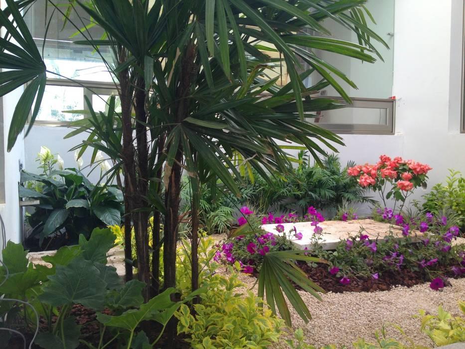 Casa Z-26. Jardín interior con celosía metálica. Jardines modernos de EcoEntorno Paisajismo Urbano Moderno