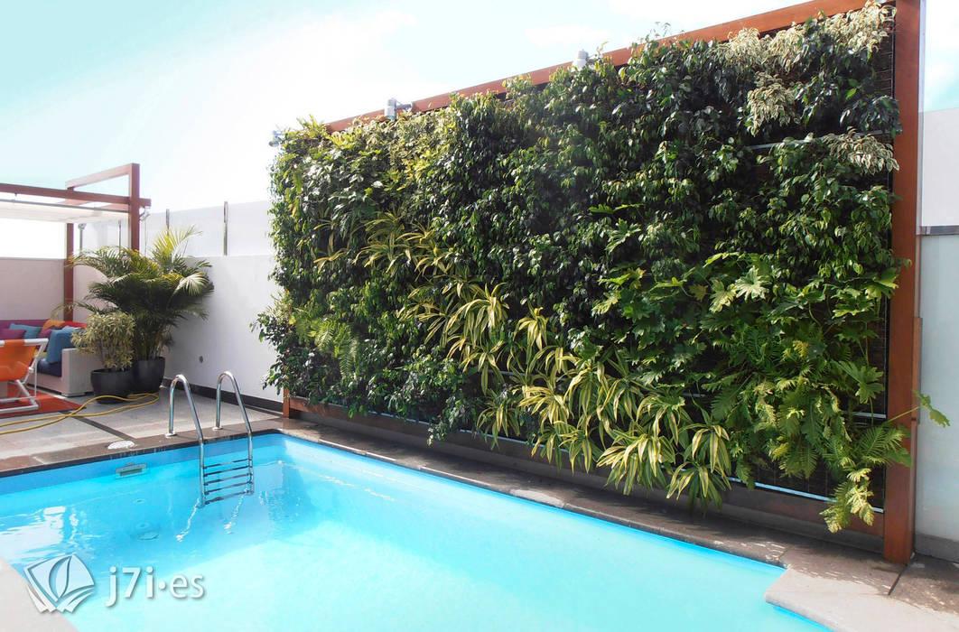 7 detalles para una pared tropical Paredes y suelos de estilo tropical de Jardineria 7 islas Tropical