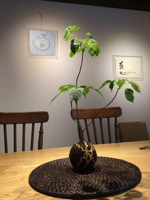 temari BOLTEX by Lovely Life Design Modern
