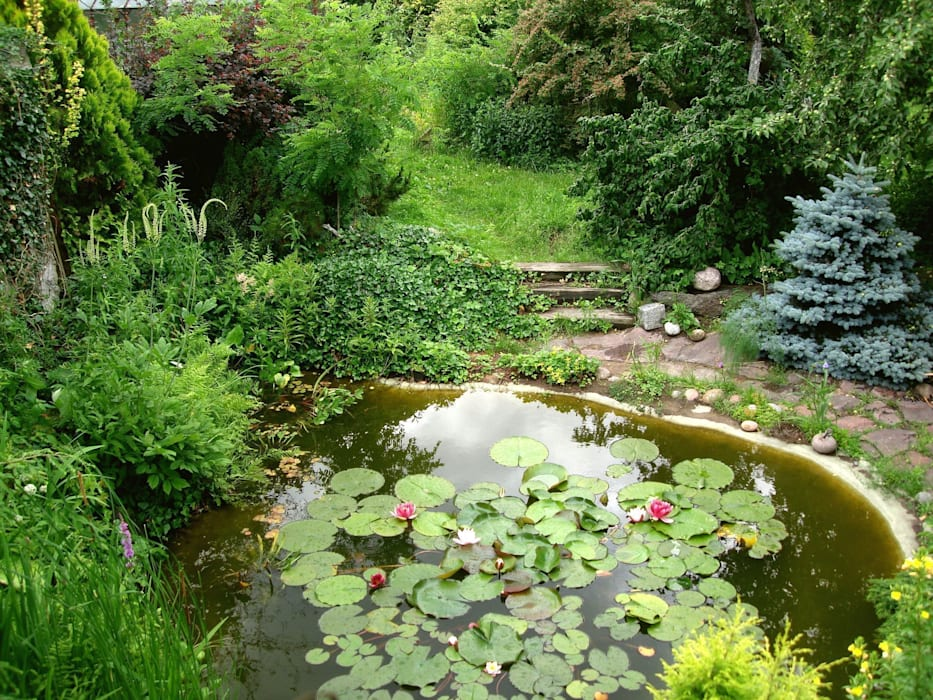 Staw ogrodowy od Garden Ekspert Studio Architektury Krajobrazu Klasyczny