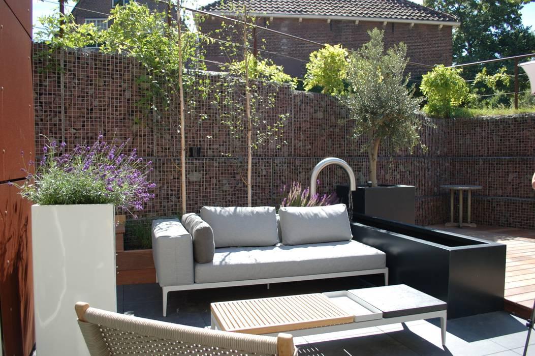 Moderne verdiepte daktuin Haarlem Moderne tuinen van Biesot Modern