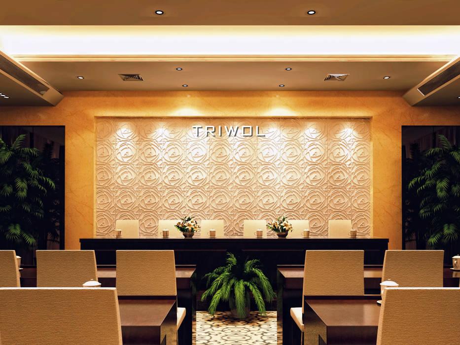 Group Enerji Yapı Dekorasyon – TRIWOL PEONY 3D DUVAR PANELİ:  tarz Duvarlar,