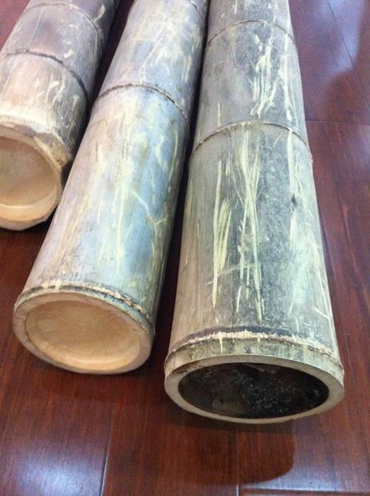 Group Enerji Yapı Dekorasyon – Woodtropic Bambu Masif Parke :  tarz Bahçe