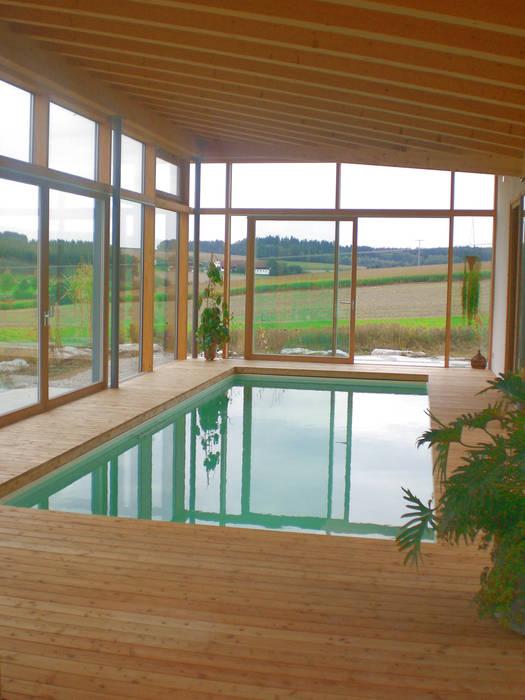 Modern Pool by Moserarchitekten Modern