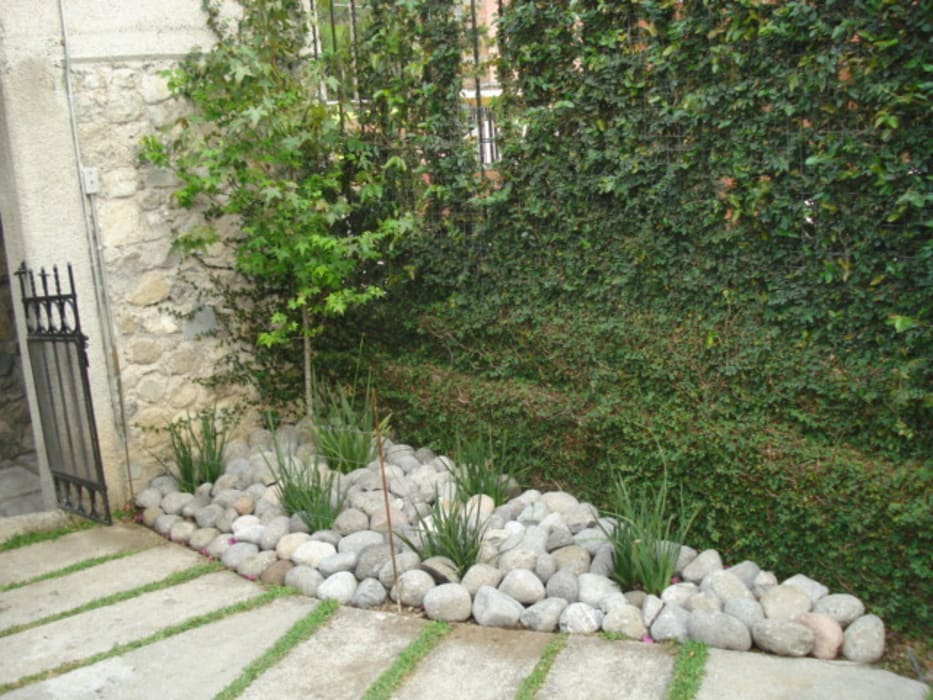 Minimalist style garden by Vivero Sofia Minimalist
