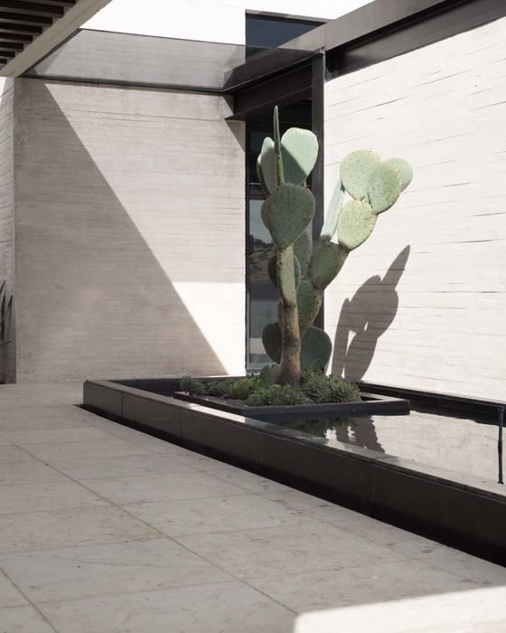 Balcones y terrazas de estilo moderno de Polen Diseño Vivo Moderno