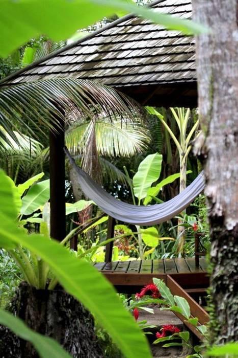 Jardines de estilo tropical de Eduardo Luppi Paisagismo Ltda. Tropical
