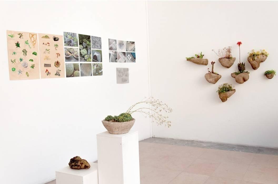 Julie Martin Interior landscaping