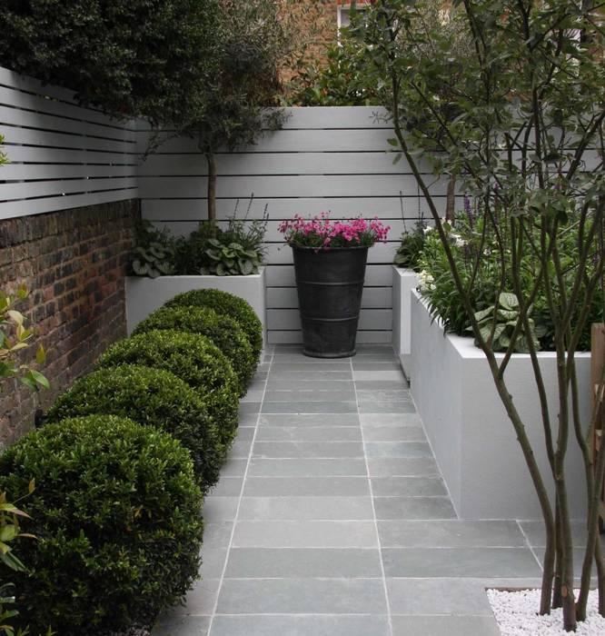 Small urban garden:  Garden by Ruth Willmott, Modern