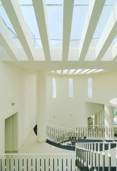 DOBLE ALTURA Pasillos, vestíbulos y escaleras modernos de Excelencia en Diseño Moderno