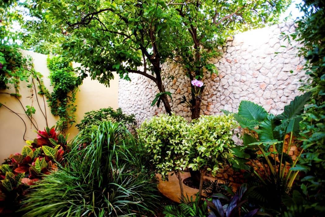 Patio Amarillo: Jardines de estilo moderno por Taller Estilo Arquitectura
