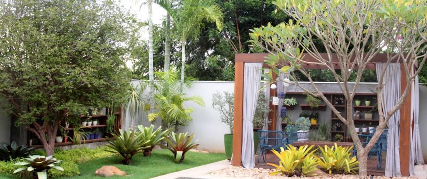 Detalhes do jardim exuberante RABAIOLI I FREITAS Jardins tropicais Madeira Verde