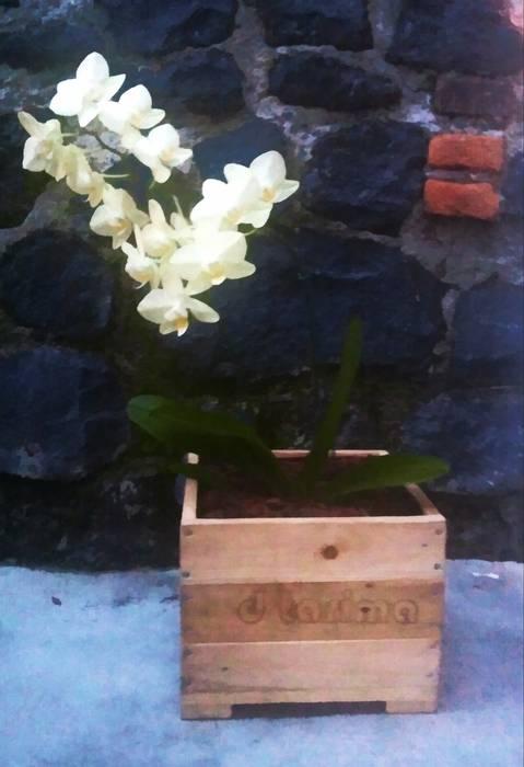 d tarima Garden Accessories & decoration