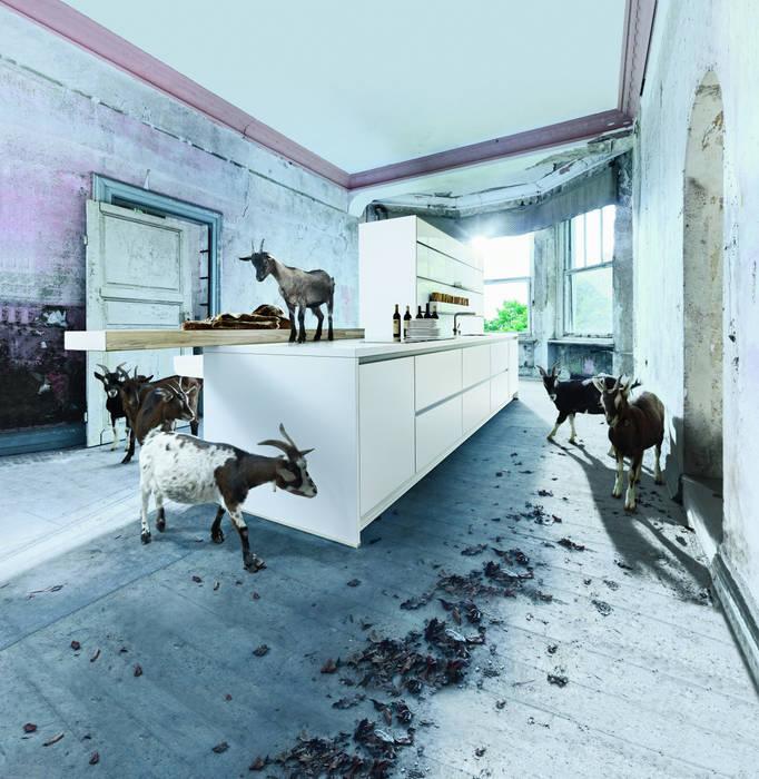 Wit kookeiland:  Keuken door Tinnemans Keukens, Modern