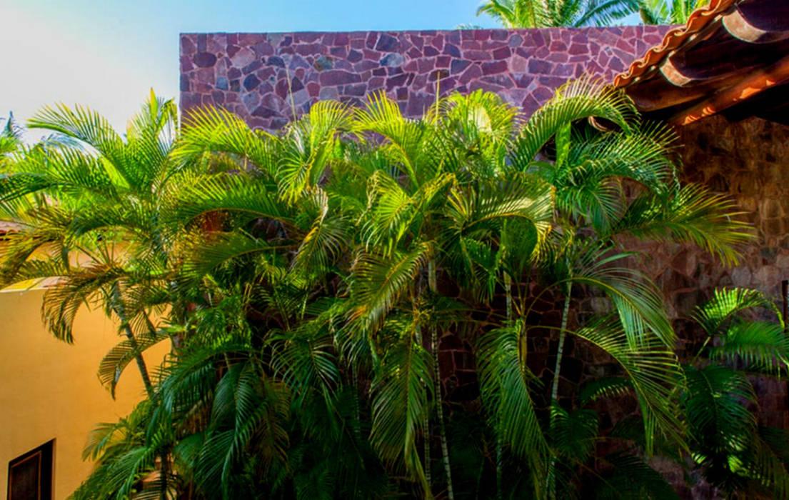 Casa Tortugas: Jardines de estilo topical por BR  ARQUITECTOS