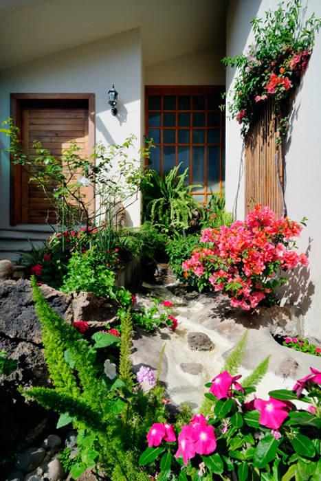 cascada de ingreso: Jardines de estilo  por Excelencia en Diseño, Asiático Derivados de madera Transparente