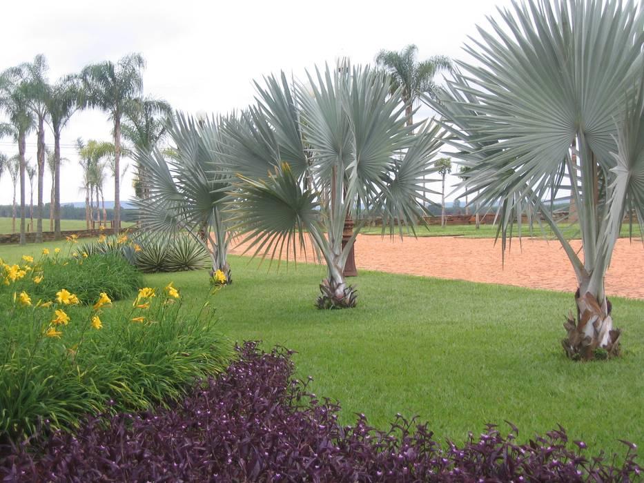 Jardins Naturais Jardins campestres por Junia Lobo Paisagismo Campestre