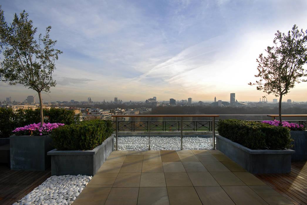 A West London Roof Garden Modern balcony, veranda & terrace by Bowles & Wyer Modern