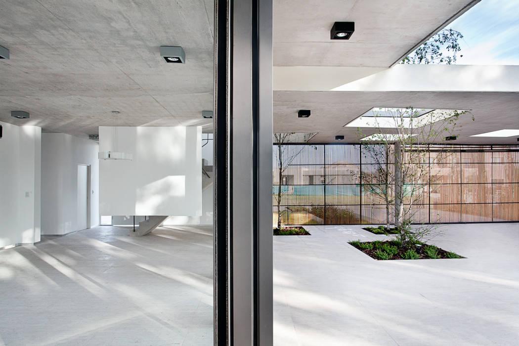 Casa Pedro Jardines modernos: Ideas, imágenes y decoración de VDV ARQ Moderno