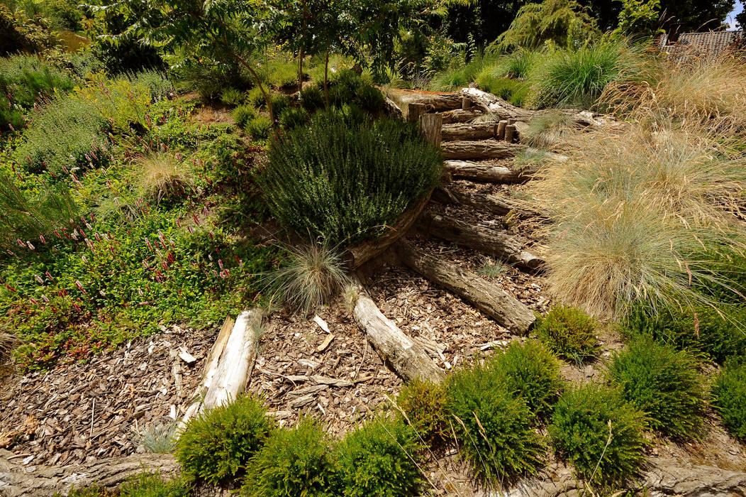 Jardines modernos de Tuindesign & Styling Ves Reynders Moderno
