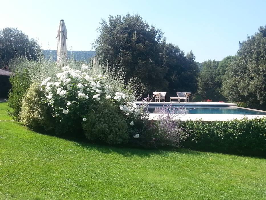 Giardino in Toscana: Giardino in stile in stile Mediterraneo di Daniela Bodini