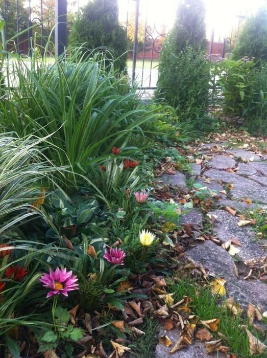 зона отдыха на соточке: Сады в . Автор – TOPOS, Классический