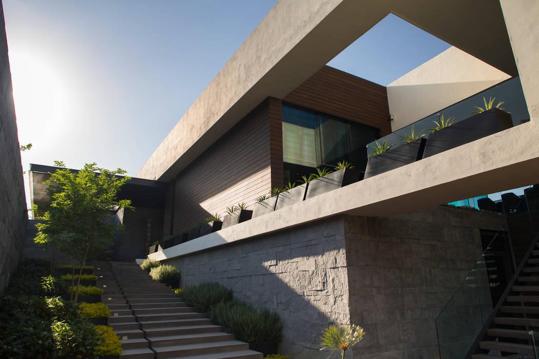 Taman Modern Oleh HARARI LANDSCAPE Modern