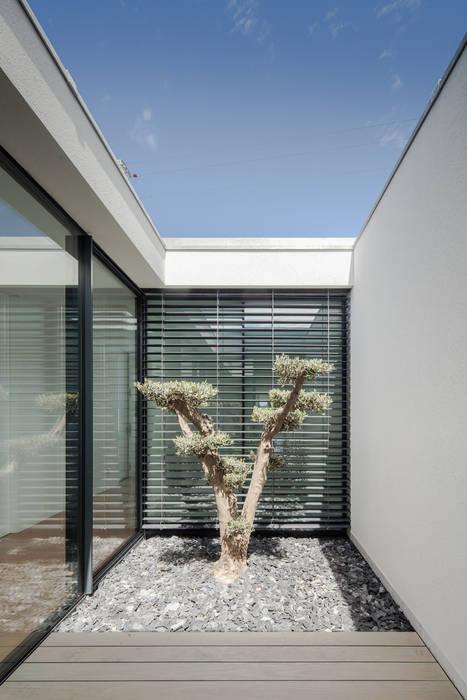 Casa em Gandra - Raulino Silva Arquitecto: Jardins  por Raulino Silva Arquitecto Unip. Lda