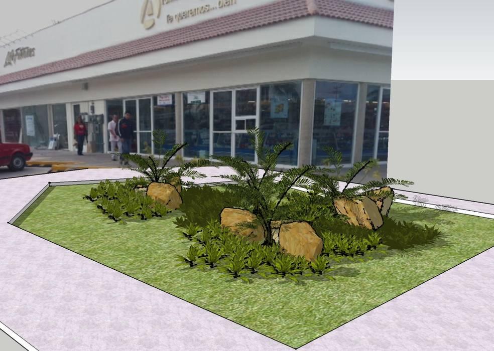 Tropical style garden by Tropico Jardineria Tropical