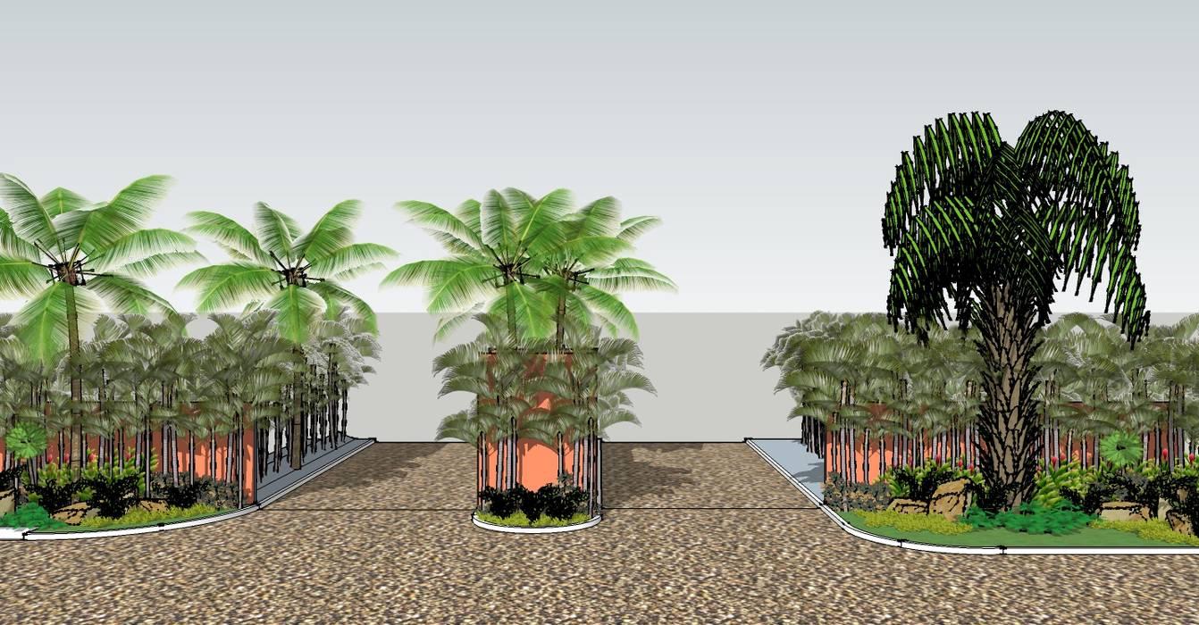 INGRESO A FRACCIONAMIENTO Tropico Jardineria Jardines tropicales