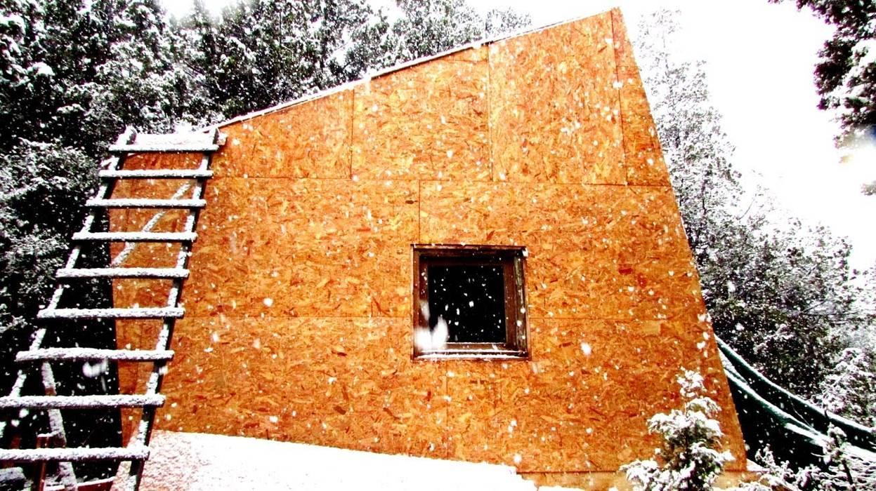 Modern home by forma Modern Wood Wood effect