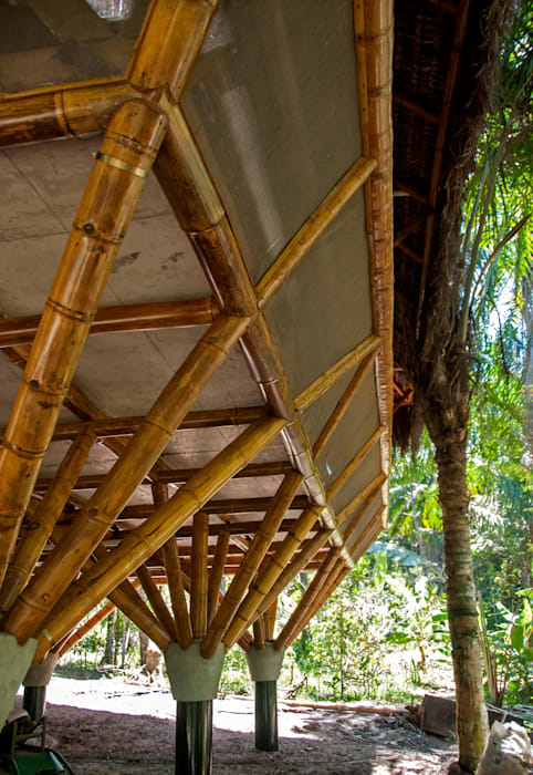 by IR arquitectura Tropical Bamboo Green