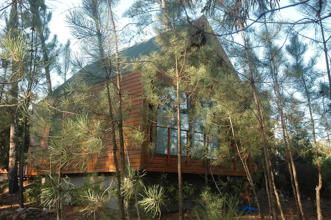 3 anos depois... Casa em Cabeça Santa Casas rústicas por NORMA | Nova Arquitectura em Madeira (New Architecture in Wood) Rústico Madeira maciça Multicolor