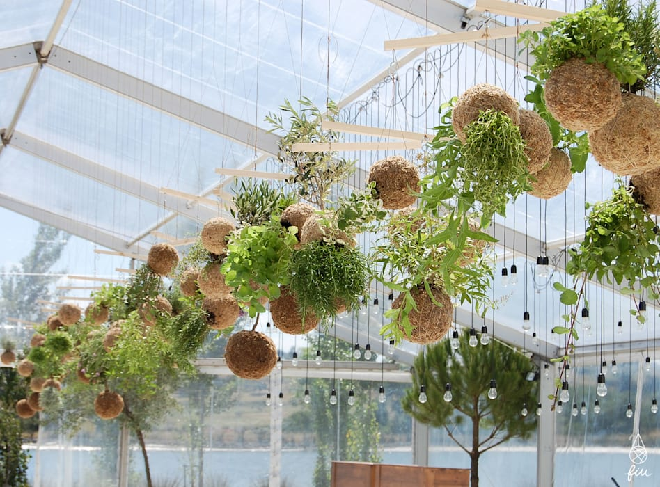 Jardines de estilo moderno de fiu jardins, lda. Moderno