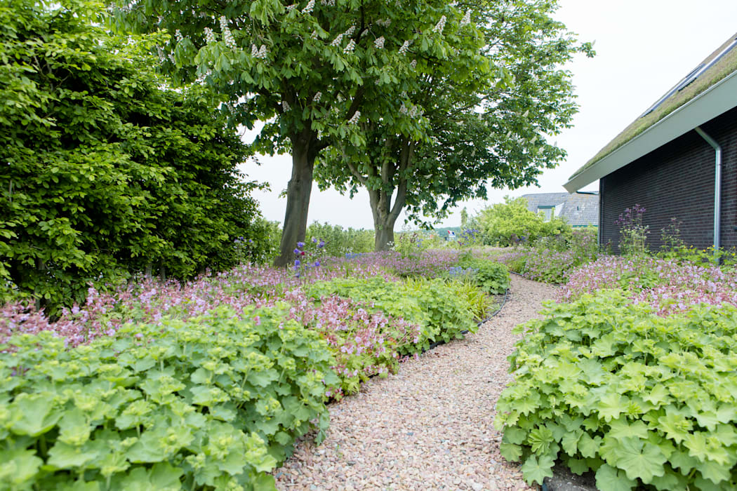 Jardin rural par Dutch Quality Gardens, Mocking Hoveniers Rural