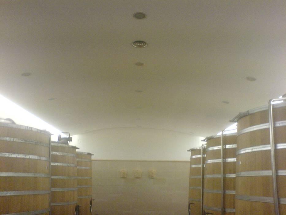 plafond Ba 13: Cave à vin de style de style eclectique par SAS ACCTIF DESIGN