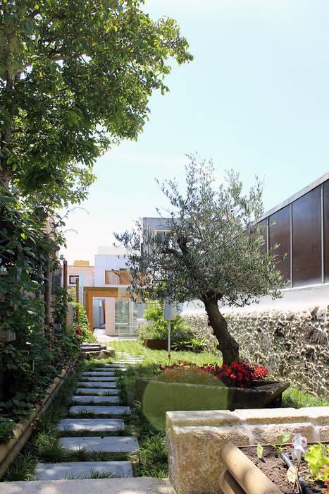 Garten von PFS-arquitectura, Minimalistisch