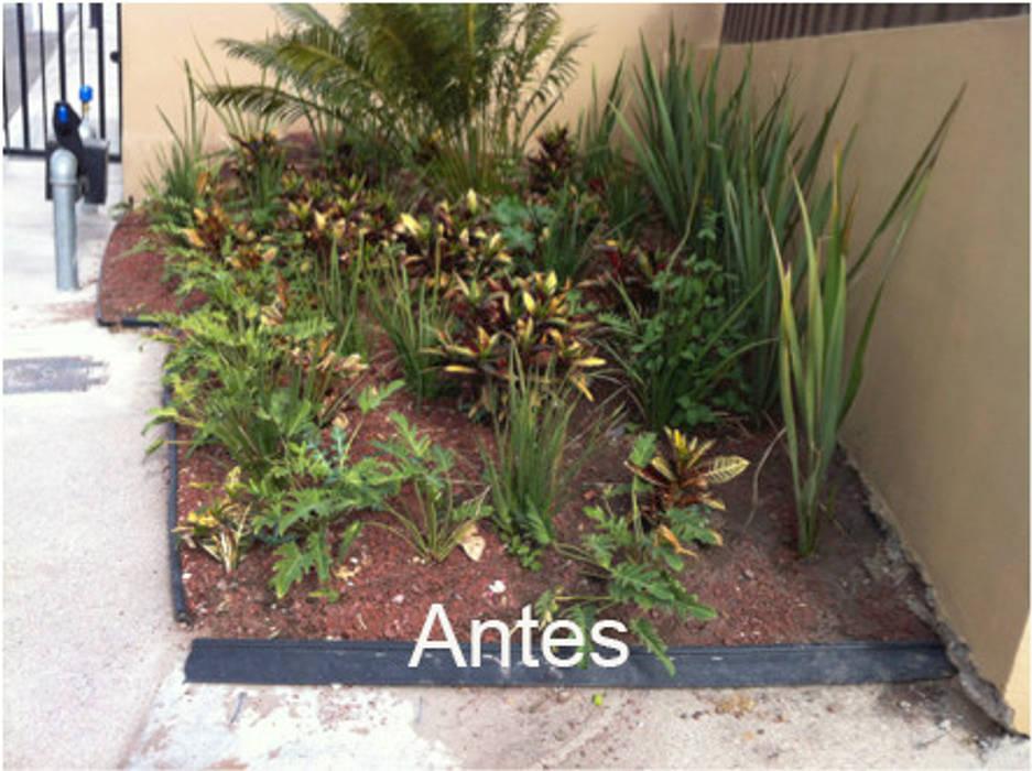 Jardinera de entrada al fraccionamiento antes de ser intervenido: Jardines en la fachada de estilo  por Hábitas, Mediterráneo