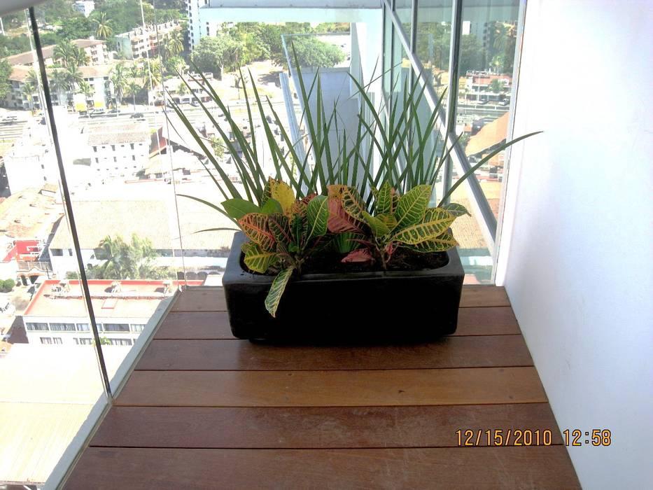 MACETA CON PLANTAS EN BALCON Jardines de estilo tropical de Tropico Jardineria Tropical