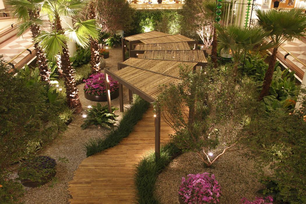 Minimalistischer Garten von BAMBU CARBONO ZERO Minimalistisch Bambus Grün