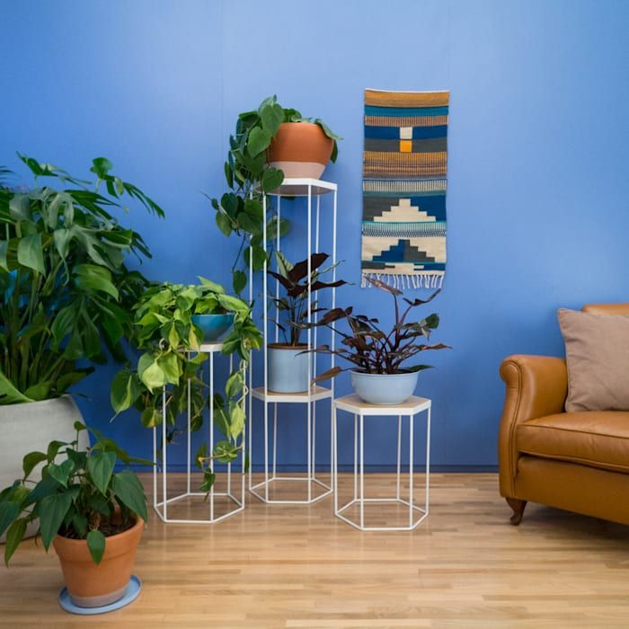 de estilo tropical de homify, Tropical Metal
