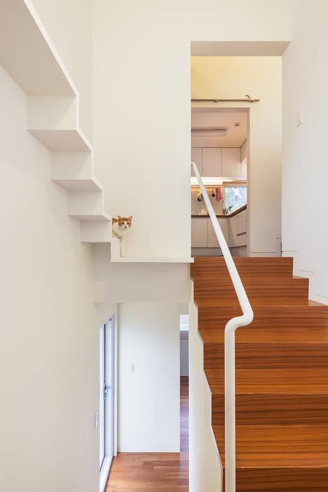 Pasillos, vestíbulos y escaleras de estilo moderno de OBBA Moderno